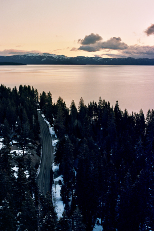 dearscience:  Tahoe Trail by Samuel Crossley