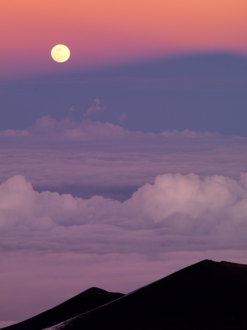 vurtual:  Mauna Kea Moonrise by Ben H.A full moon rises over the shadow of Mauna Kea, the highest point on the Hawaiian islands.