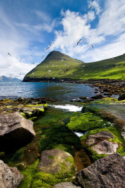 nordravn:  Gjógv, Faroe Islands by Suni.Mittún on Flickr.