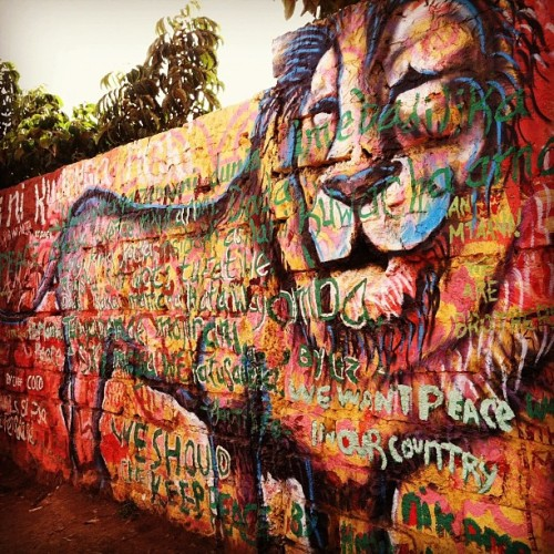 Kibera Walls for Peace youth arts project, Nairobi, Kenya. Lion with kids' poetry