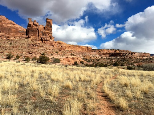 Surprising beauty found on a winter's day on a run from the heart of Moab, Utah.Photo: Bryon Powell