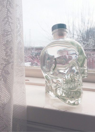Got a crystal head vodka in birthday present. My sister knows me.