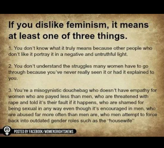 4. Feminism is fundamentally broken and actually reinforces all the stereotypes it claims to fight while actively destroying the rights of anyone other than women.