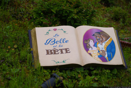 Beauty and the beast book by ThatDisneyLover / Laura Knighton on Flickr.