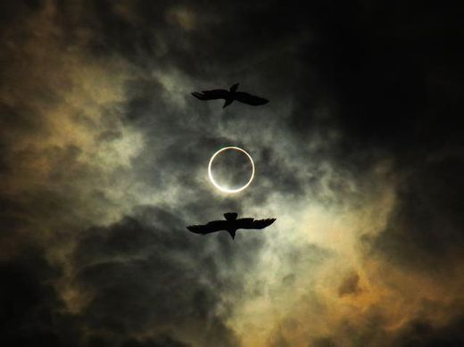 (via May 2012 Annular Solar Eclipse in Photos — Science & Technology — Sott.net)