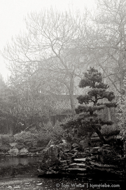 Sun Yat Sen Gardens on Flickr.Via Flickr: An alternate view of Sun Yat Sen Gardens during the fog, taken with a blue filter to accentuate the fog, as if that was needed!
