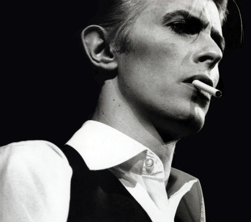 Happy 66th Birthday to David Bowie!