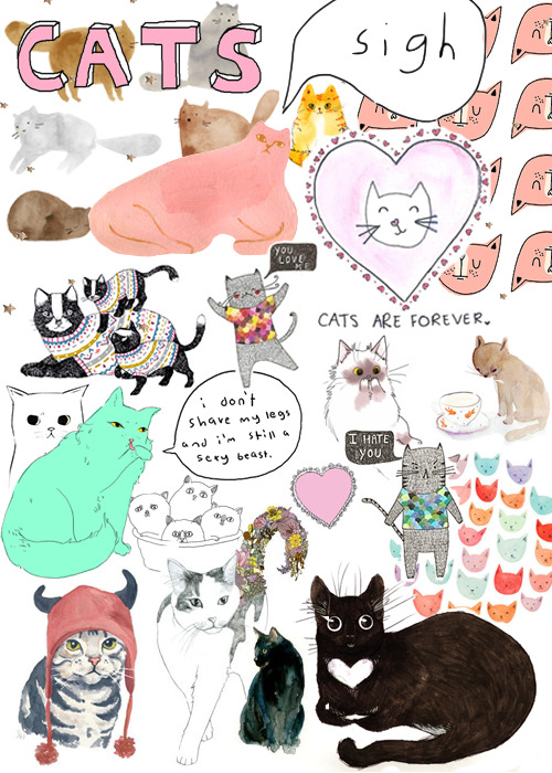 the-desired-constellation:  cats are forever