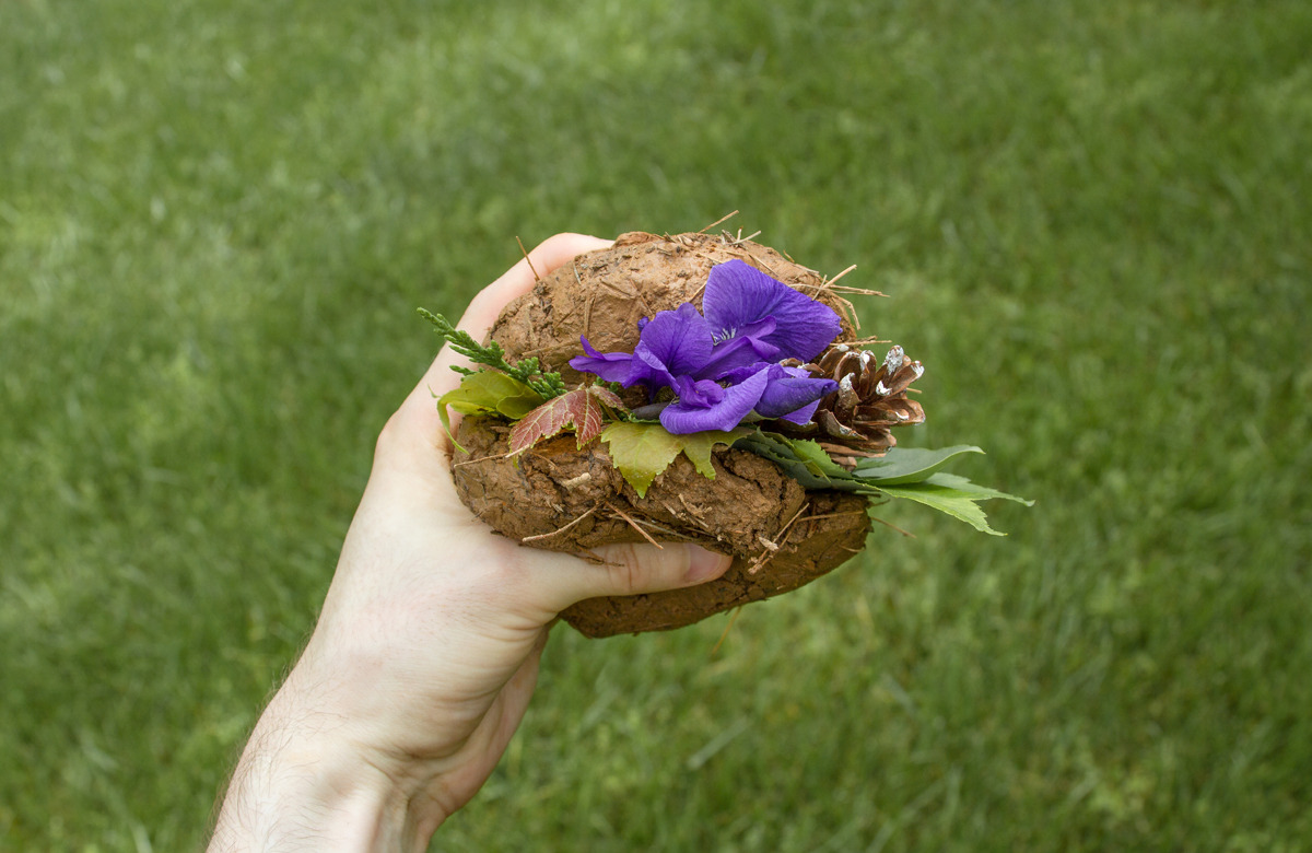 organic sandwich, 2013 dirt, grass, straw or something, pine needles, tiny rocks, leaves, a pine cone (for texture), flowers (for flavor), water (as a cohesive agent) •••