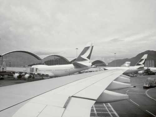 Back! at Hong Kong International Airport (HKG) – View on Path.