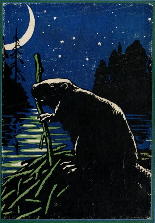 geisterseher:  Clarence Hawkes, Shaggycoat; the Biography of a Beaver (1906) Illustrations by Charles Copeland
