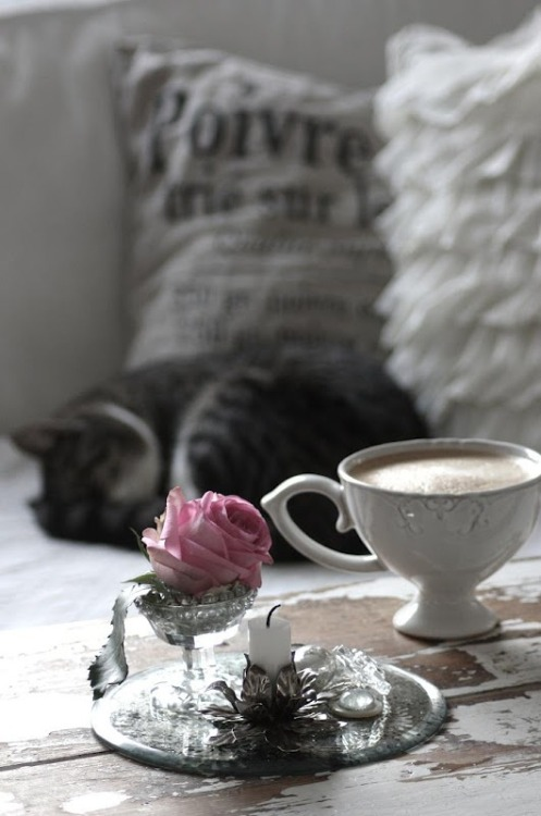 umla:  (via A cat and a cup of tea- all you need to add is … | Beauty in the …)  —————————- She's brought so much into my life …   Light, love … things I never thought I'd feel, and now I'm so frightened of losing her. … or failing her like I failed the rest of them. What is this curse that follows me? Why do all of my students, my children, fall to the darkness? Is it the teaching? The methods? Something I don't show them?  Or is it just me? They do say blood will tell …    Is it just that my line is poisoned by the things I have done?   ~~Sarthloriel