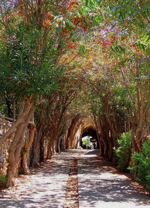 visitheworld:  The beautiful streets of Byblos, the oldest continuously inhabited city in the world, Lebanon (by Nicolas Karim).
