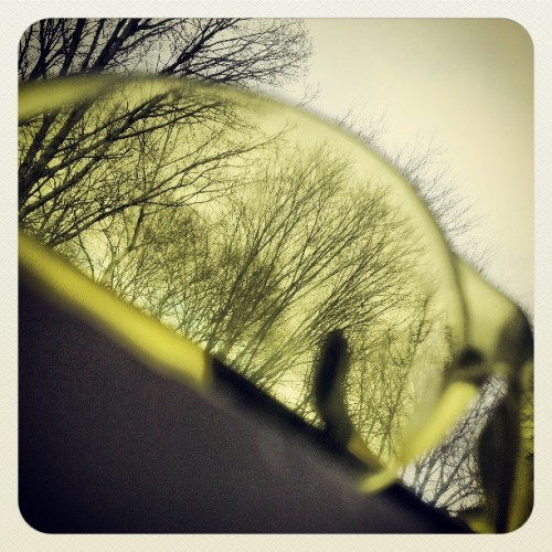 #yellow #tinted #glasses #view #stretching #monday #morning #trees in a #cloud #filled #sky  (at home away from home sweet home!)