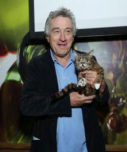 Robert De Niro and Lil Bub