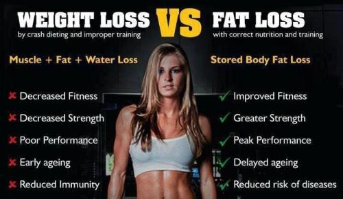 ollivierrieantonio:  weight loss vs fat loss