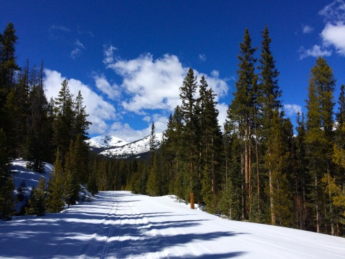 Winter transforms roads to secluded singletrack around Leadville's Turquoise Lake.Photo: Bryon Powell