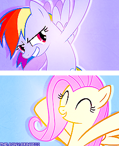 My Little Pony: Pony Types The Pegasus