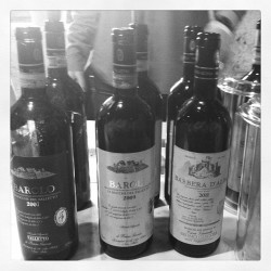 The Giacosa line up @Summa2013 today in Alto Adige. For $40, the 2011 Barbera d'Alba rocked my world! #Italy #wine