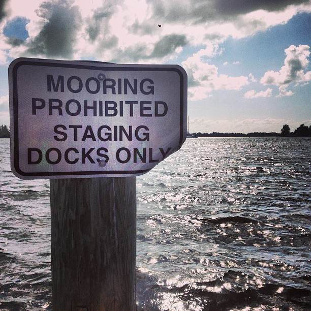 Don't know what mooring is but I am going out on A BOAT! #sundayfunday
