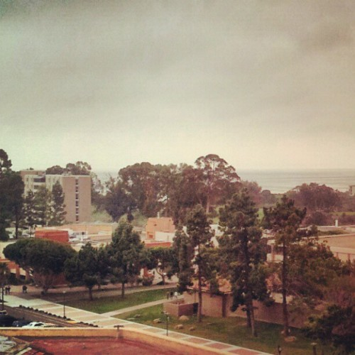 My type of studying weather #gloomy #davidsonlibrary #biochem #8thfloor