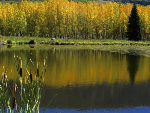 guidedsailor:  PondOuray, Colorado