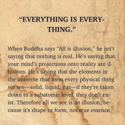 hectormh:  Everything is everything… #taoofwu #wu #buddha #illusion #meditation #enlighten