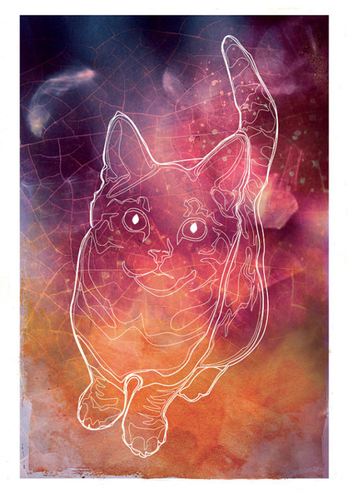 Cat Constellation