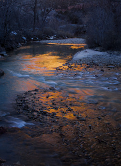 Virgin River by morning light - Zion NP - 2-17-08  02 by Tucapel on Flickr.