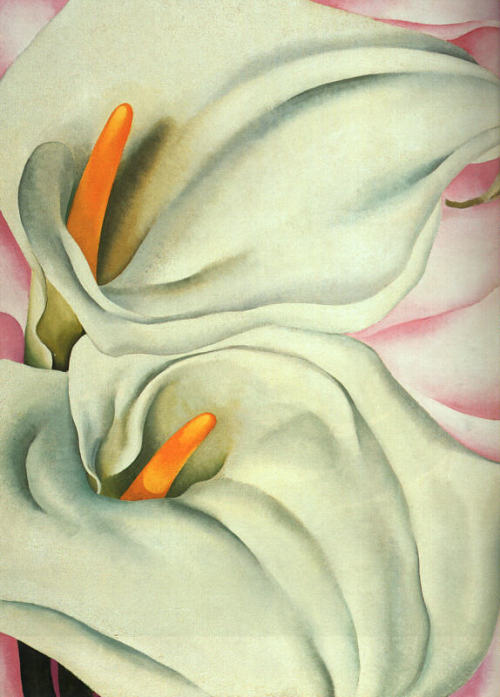 museumuesum:  Georgia O'Keeffe Two Calla Lilies on Pink, 1928 Oil on canvas, 40 x 30 inches (101.6 x 76.2 cm)