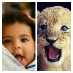 Blue Ivy and a Lion cub, Beautiful! @beyonce #gorgeous #lookalike