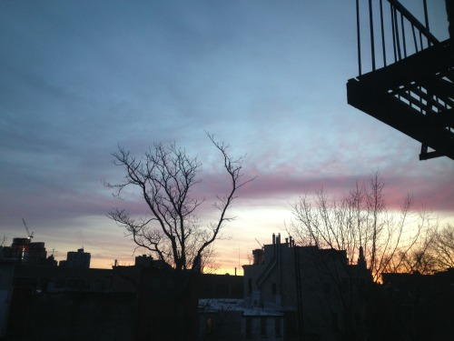 Morning in #Brooklyn.