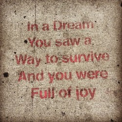 #Sidewalk #Quote #Dream #Joy #Happy #Survive #Hollywood #LosAngeles