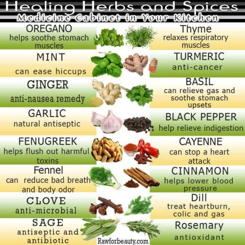 veganmovement2012:  Healing herbs and spices