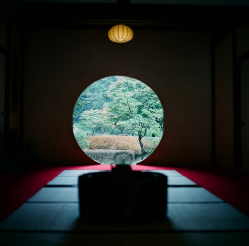 dreams-of-japan:  55 by nao.. on Flickr.