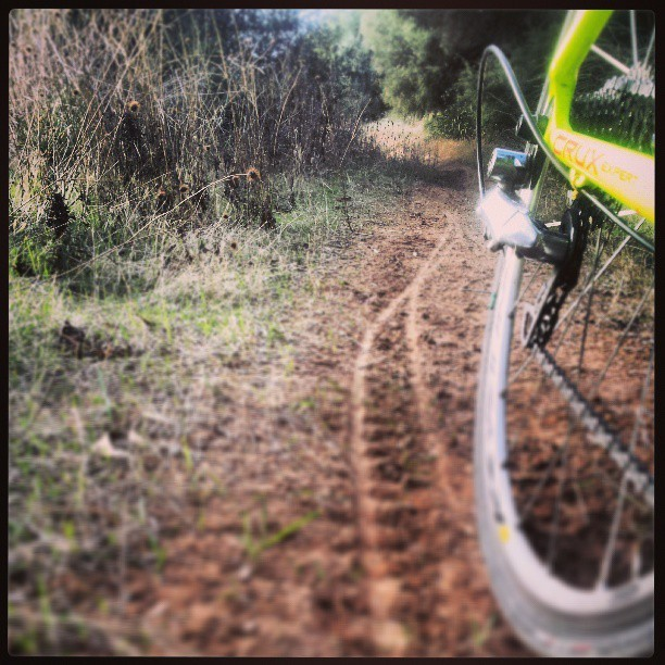 Recovery ride. #iamspecialized #cx #singletrack #Crux