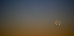 2013-03-12 on Flickr.Comet PanSTARRS with crescent moon in the evening sky.