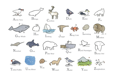 Arctic illustrated alphabet