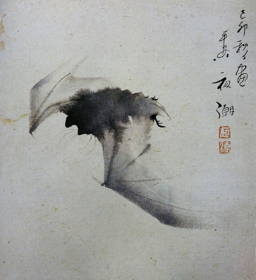"les-sources-du-nil:  Yashô (1782-1825) ""Bat in Flight"" Ink on paper (Ashmolean Museum, Oxford. In Maurice Coyaud 'L'Empire du regard'- Mille ans de peinture Japonaise' Ed. Phebus, 1981)"