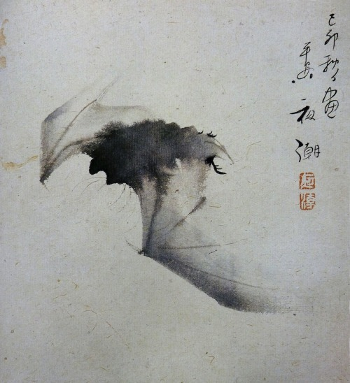 "les-sources-du-nil:  Yashô (1782-1825) ""Bat in Flight"" Ink on paper (Ashmolean Museum, Oxford. In Maurice Coyaud 'L'Empire du regard'- Mille ans de peinture Japonaise' Ed. Phebus, 1981)  found this so incredibly beautiful I forgot to breathe"
