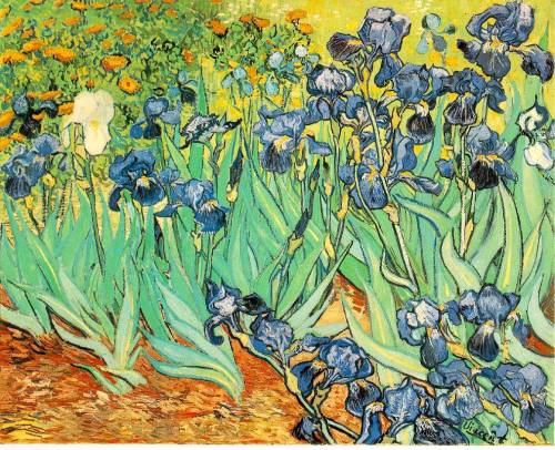 uniillusion:  irises by van gogh
