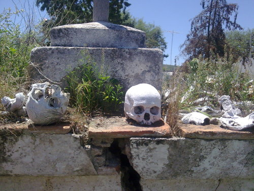 In Mexico on the old graveyards you can find bones and skulls,  how scary.