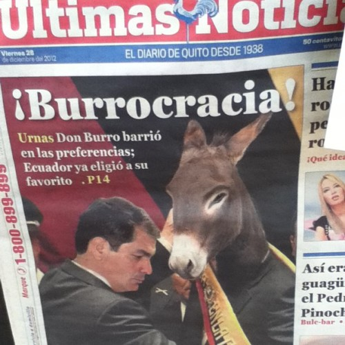 The donkey's the favourite in the Ecuadorian polls. #election #ecuador