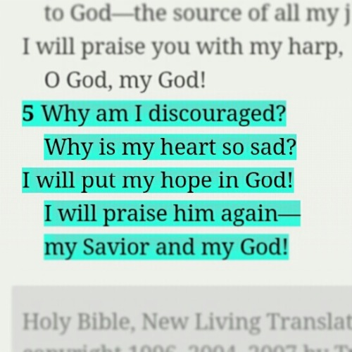 crowned86:  Psalms 43:5 NLT Why am I #discouraged? Why is my #heart so sad? I will put my #hope in #God! I will praise him again— my #Savior and my #God!