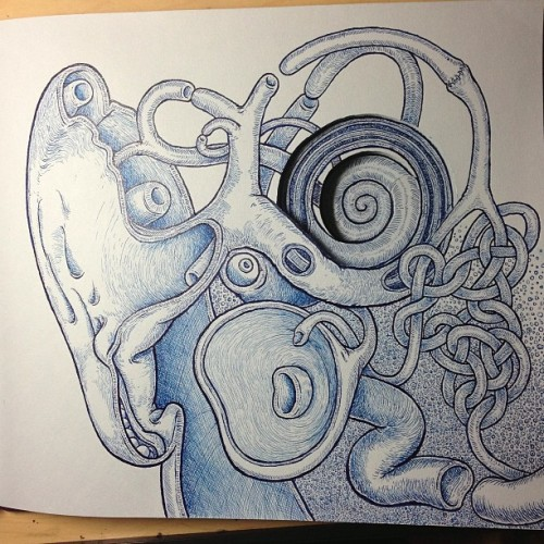 teplin:  Bustin' out the layers for 2013 #penandink #ear #artistbook #cochlea