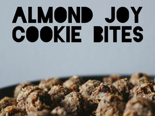 yackattack:  Almond Joy Cookie Bites! Check out the guest blog with an amazing recipe (from Oh, Ladycakes) on Vegan Yack Attack, now!