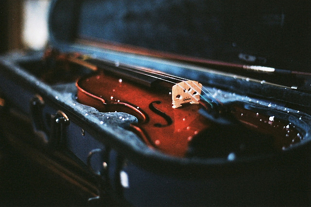 stagnants:  violin + snow by Pooneh Ghana on Flickr.