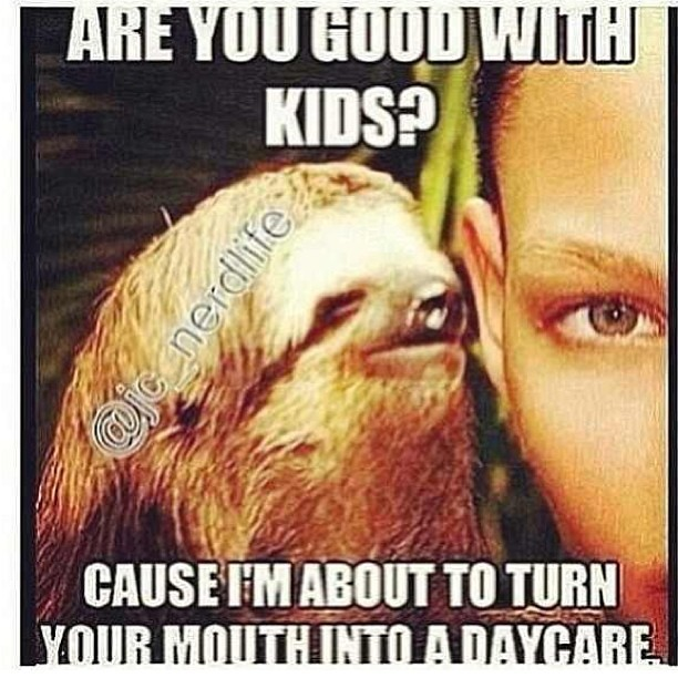 This sloth here!! #RP from @britneyisland 👈 #BlameHer