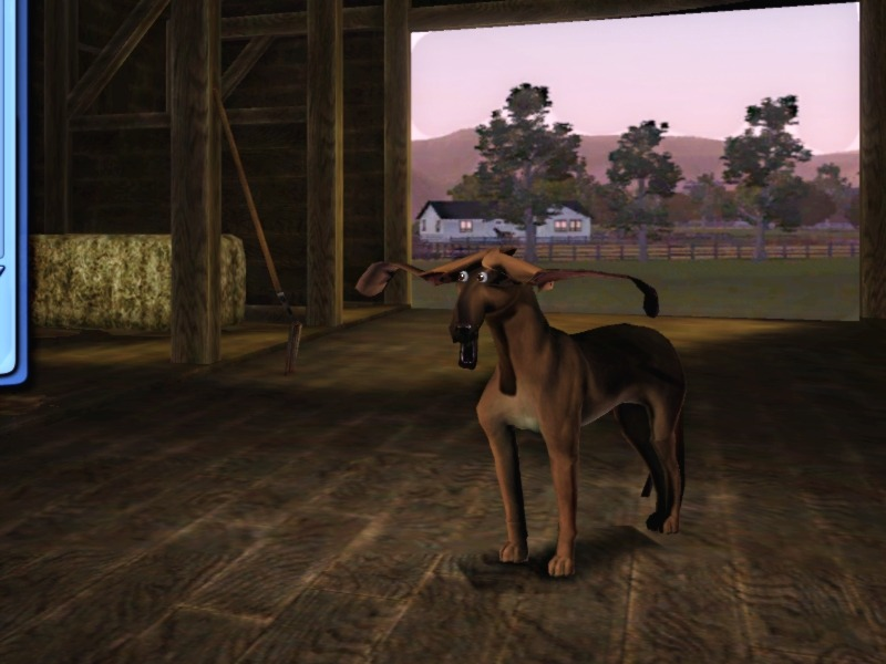 simsgonewrong:  I wanted a bloodhound, but it turned out to be Aliens vs Predator