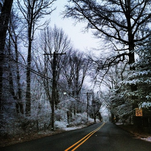 NJ forest winters #winter #snow #cold #trees #evergreen #branches #ice #road #parsippany #nj #newjersey #nature #natural#sky #wilderness #serene    (at Parsippany, NJ)